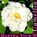 Martha Tuck Camellia Japonica