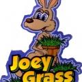 Joey Grass