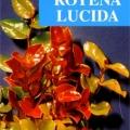 Royena Lucida