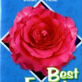 Best Friend Rose