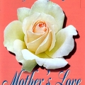 Mother's Love Rose