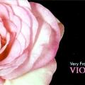 Violina Rose